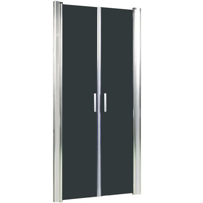 Душевая дверь в нишу River Suez 90 ТН 10000001558 профиль Матовый хром стекло тонированное