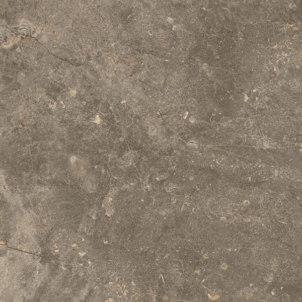 Фото - Керамогранит ColiseumGres Cervinia Земля 45х45 см чудесная планета земля