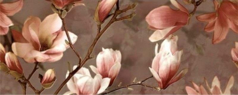 Керамический декор Ibero Charme Decor Magnolia B 20x50см панно ibero groove decor waterefall a b c 75x75 комплект