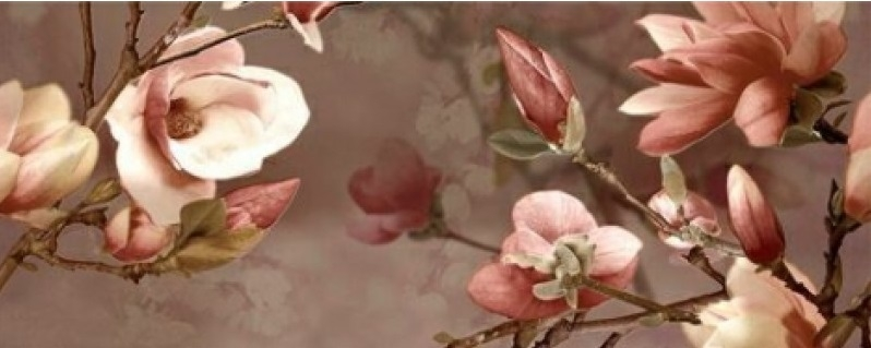 Керамический декор Ibero Charme Decor Magnolia C 20x50см панно ibero groove decor waterefall a b c 75x75 комплект