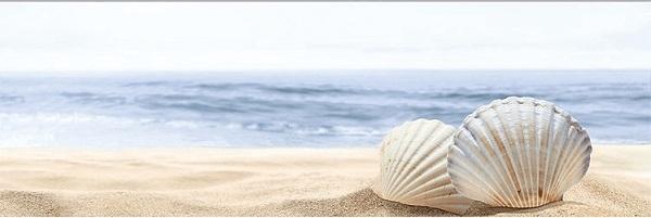 Керамический декор Ibero Poeme Perla Decor Sea 2 25х75см
