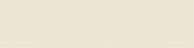 цена Керамическая плитка Monopole Ceramica Chocolate Mate Liso Marfil настенная 10х40 см онлайн в 2017 году
