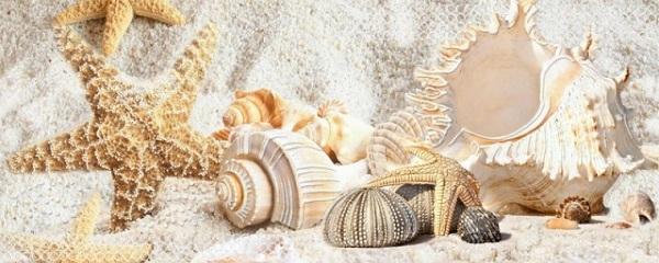 Керамический декор Azori Caliza Mare 2 20.1x50.5см