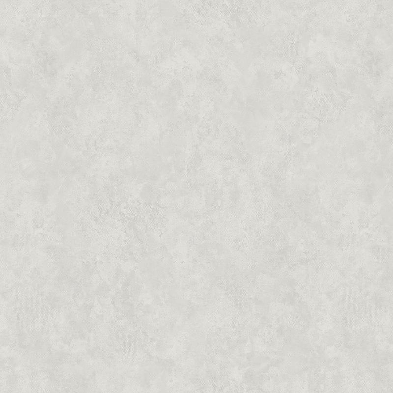 Обои Bernardo Bartalucci Ragazza 5036-3 Флизелин (1,06*10,05) Серый, Штукатурка