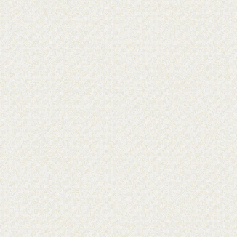 Обои Bernardo Bartalucci Riccarda 5031-1 Флизелин (1,06*10,05) Белый, Однотонные