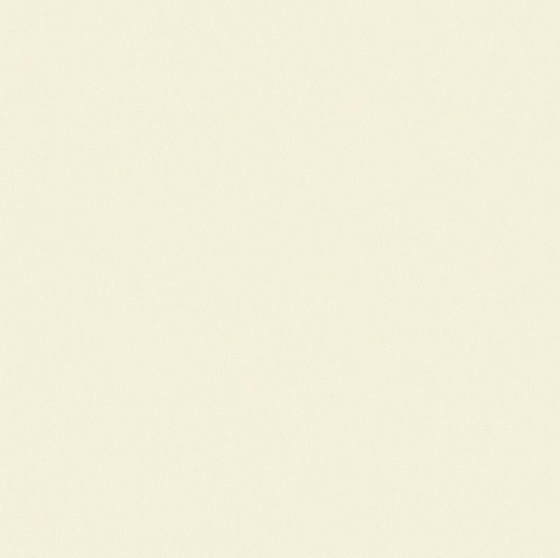 Обои Erismann Paradise 5 4508-8 Винил на флизелине (1,06*10) Бежевый, Однотонные