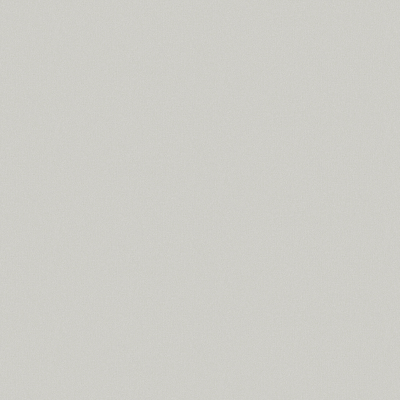 Обои Erismann Paradise 5 4508-9 Винил на флизелине (1,06*10) Серый, Однотонные