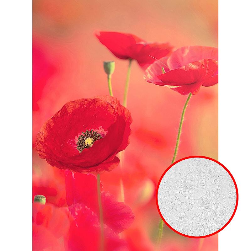 Фотообои Divino A-019 Фактура живопись Винил на флизелине (2*2,7) Красный, Цветы