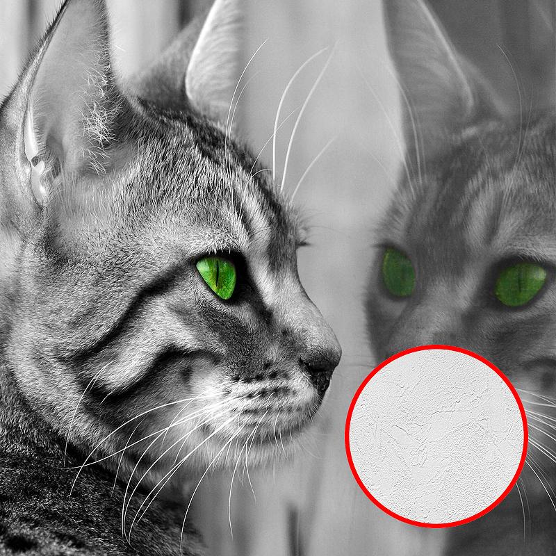 Фотообои Divino P-008 Фактура живопись Винил на флизелине (3*2,7) Серый, Животные