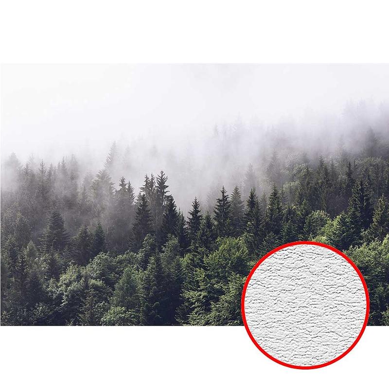 Фотообои Divino T-247 Фактура песок Винил на флизелине (4*2,7) Зеленый, Деревья