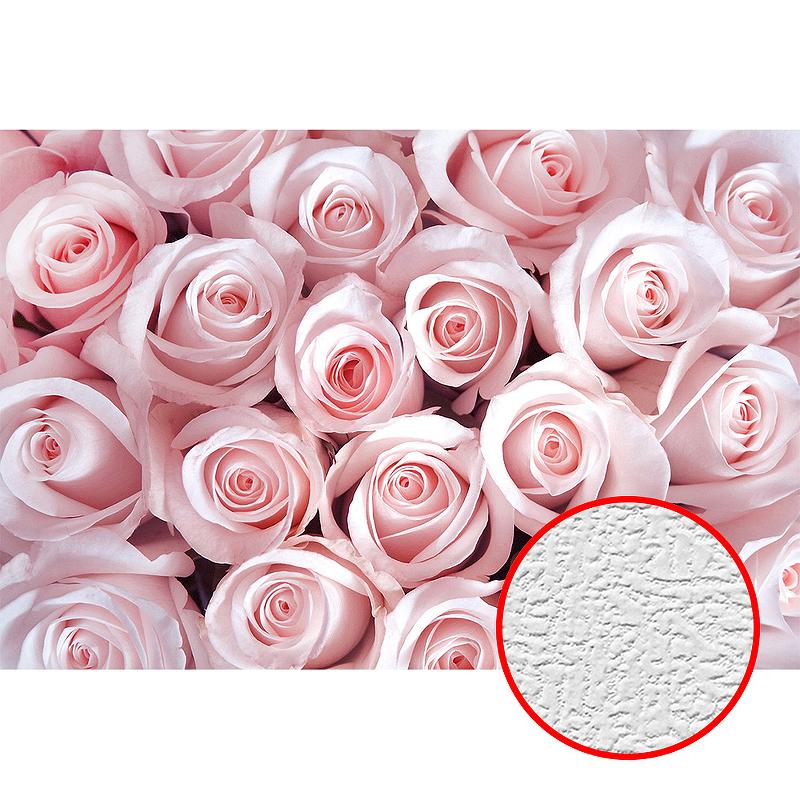 Фотообои Divino T-159 Фактура холст Винил на флизелине (4*2,7) Розовый, Цветы недорого