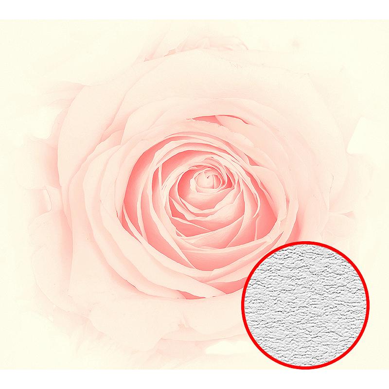 Фотообои Divino D-039 Фактура песок Винил на флизелине (3*2,7) Розовый, Цветы