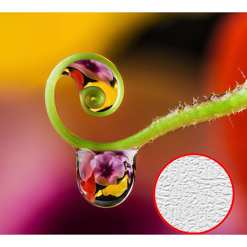 Фотообои Divino E-077 Фактура холст Винил на флизелине (3*2,7) Разноцветный, Цветы