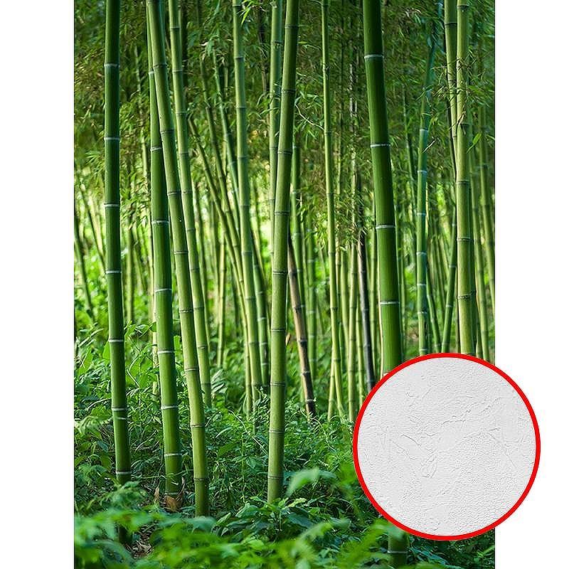 Фотообои Divino C-215 Фактура живопись Винил на флизелине (2*2,7) Зеленый, Деревья