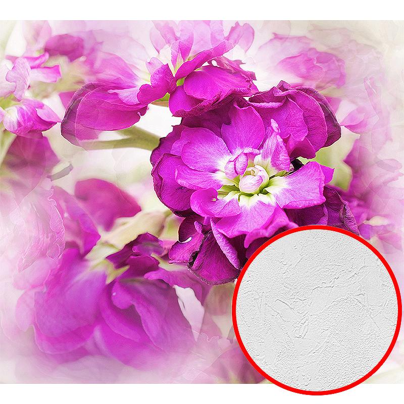 Фотообои Divino D-006 Фактура живопись Винил на флизелине (3*2,7) Розовый, Цветы