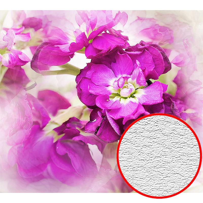 Фотообои Divino D-006 Фактура песок Винил на флизелине (3*2,7) Розовый, Цветы