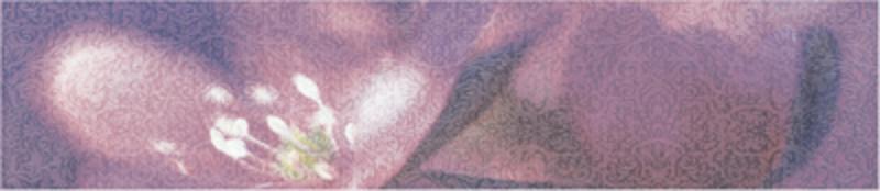 Керамический бордюр Alma Ceramica Лила БД45ЛЛ303 8х36,4 см