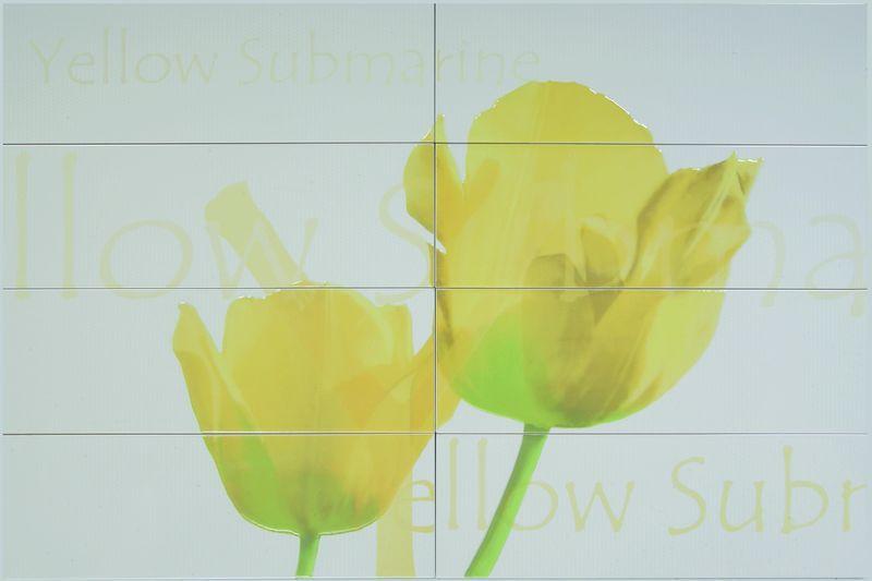 Купить Керамическая плитка, Lux Corjunto Tulipan Beige 80х116 панно, Roca, Испания