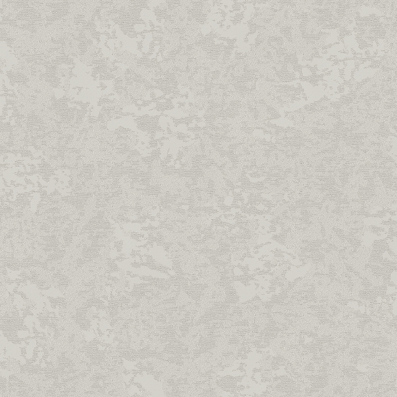 Обои Bernardo Bartalucci Constance 84223-6 Винил на флизелине (1,06*10) Серый, Штукатурка