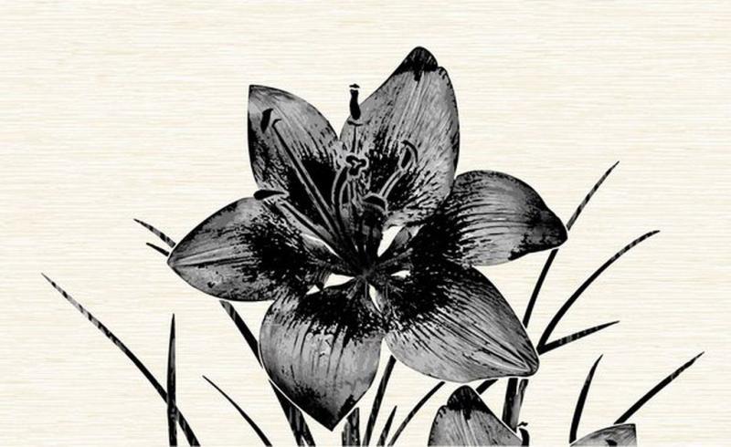 Керамический декор Нефрит Керамика Пиано чёрный 8101 25х40