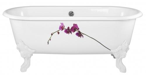 Cleo E2942 170x80Ванны<br>Ванна Jacob Delafon Cleo E2942. Размер (ДxШ) 1700x800 мм. Цвет белый. Модель в стиле ретро, на внешней стороне цветок орхидеи, ванна двусторонняя, дно с антискользящим покрытием.<br>