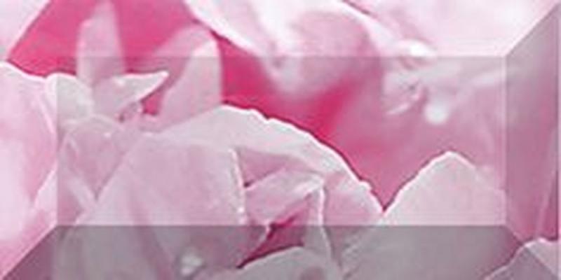 Керамический бордюр Ceramica Classic Peony рельефный br1020D281-2 20х10 см