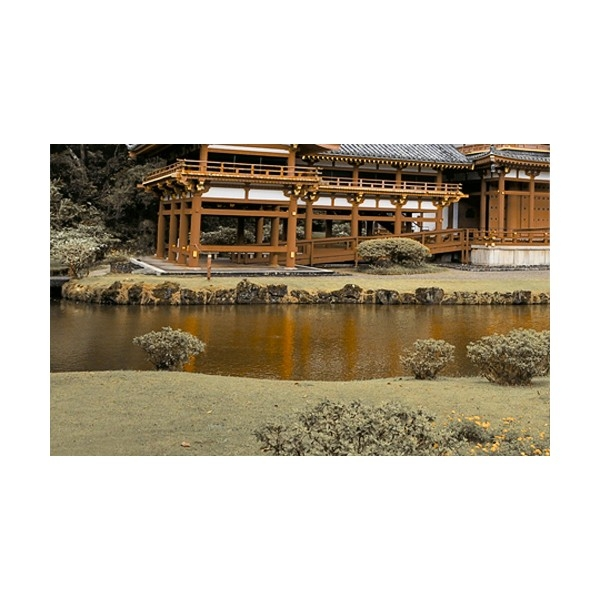 Керамический декор Golden Tile Бамбук тип-2 Н71321 25х40 см