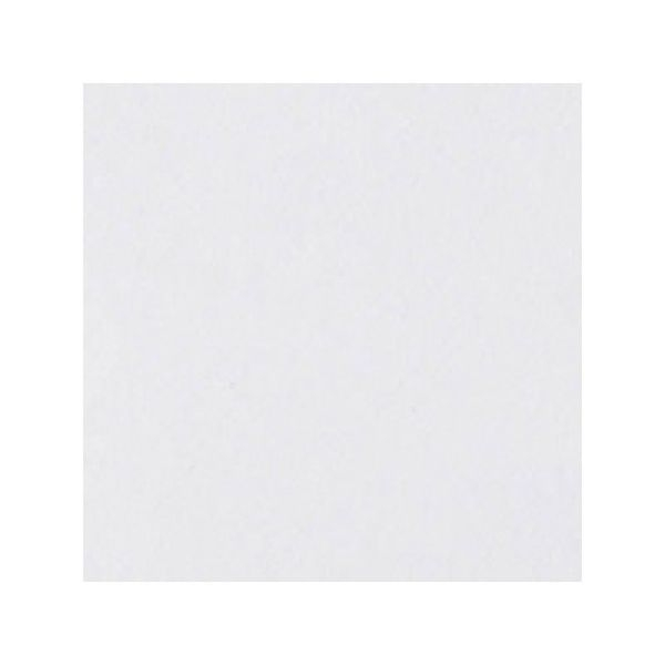 Керамогранит Top Cer Базовая плитка L4416-1Ch White - Loose 10х10 см